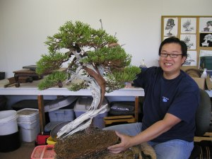 peter with bonsai